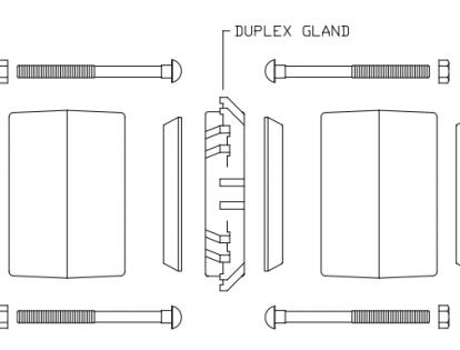 Duplex Gland